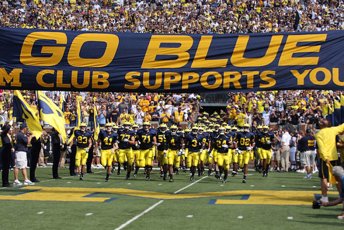 Wolverines look to rebound in 2014