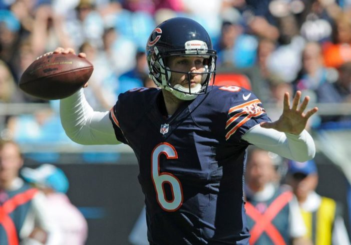 Bears blow lead, lose at Carolina, 31-24